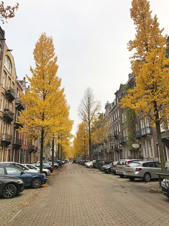 ridethewaves.it - 7 giorni ad Amsterdam